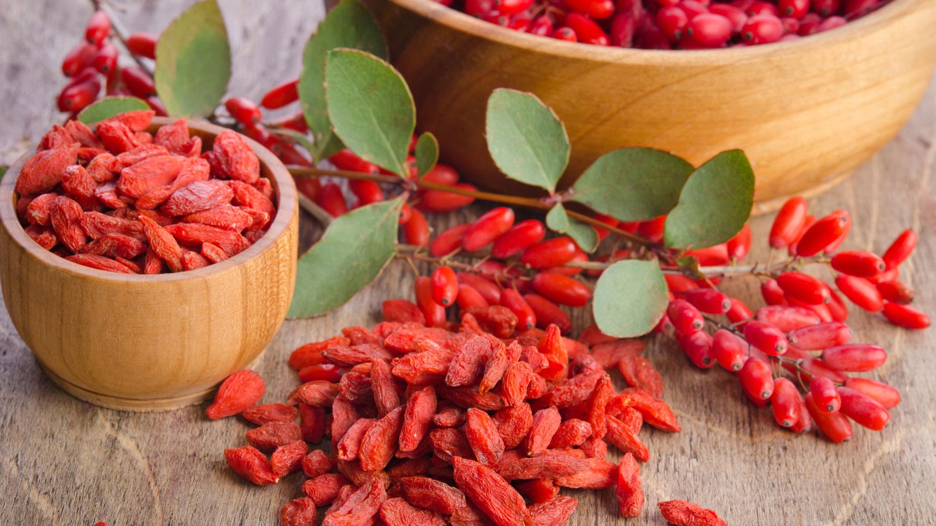 Как выглядят ягоды годжи фото